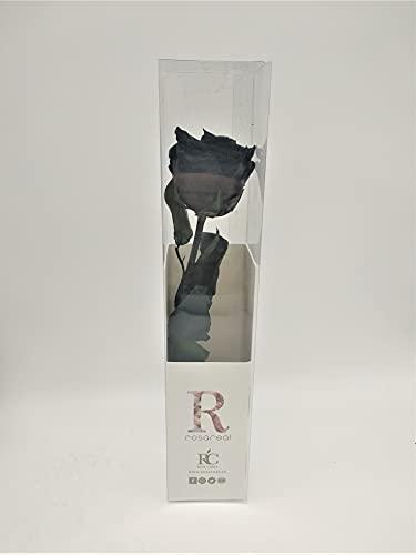 Floréate Rosa eterna preservada Negra de 25 cm