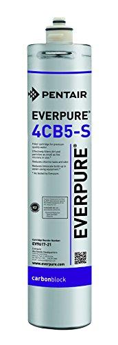 Everpure Waterfilter