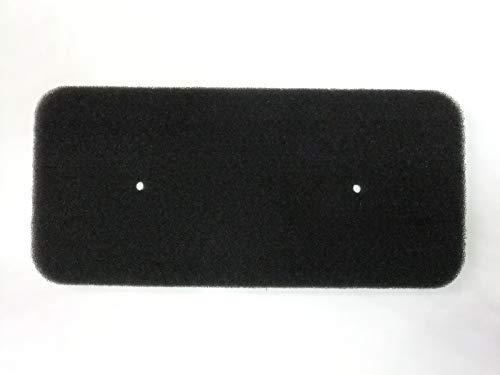 Filter für Candy Hoover 40006731 Schwammfilter Filtermatte Vlies Trockner