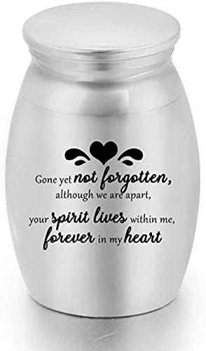 JLXQL Urnas de cremación para Cenizas Memorial Cats Mini pequeño ataúd de Recuerdo para Cenizas humanas Urnas de Aluminio para Mascotas Tarro de Ceniza Memorial Cenizas Holder -Silver_16x25mm