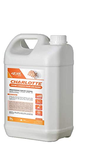 Crème Lavante Hydratante 5L Mains Utilisation Quotidienne Professionnel - CHARLOTTE
