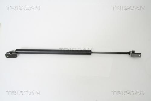 TRISCAN Gasfeder für Koffer-/Laderaum, 8710 42231