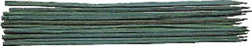 DR.SEVERIN 3018720 Pflanzstützen 40 cm 10 Stück SB Reiter