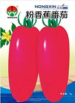 VISTARIC Violet: Big vente emballage d'origine 20 graines/Pack, graines de melon d'agitation d'or, remuer melon Watkins fruits en pot Balcon et légumes