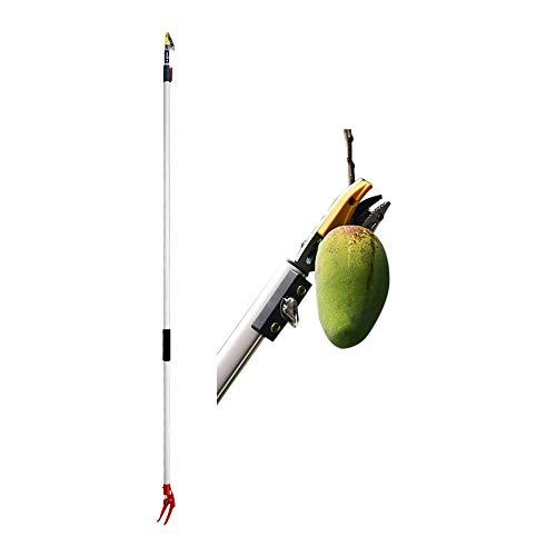 Steeler Podadora de árboles telescópica Manual portátil/recolector de Frutas eléctrico Recolector de Frutas de Largo Alcance Tijeras de podar duraderas Cortadora de Ramas