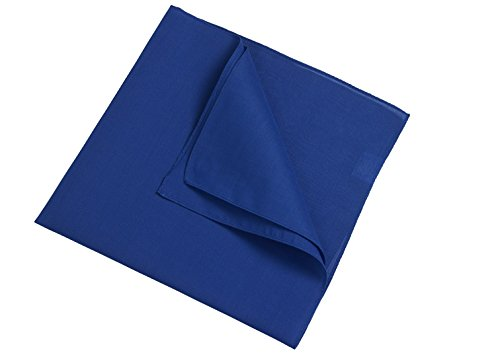 2Store24 Bandana in royal