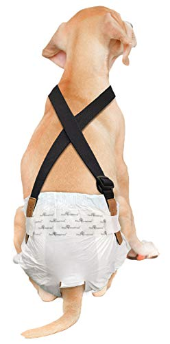 Washable Male Dog Diaper With Suspenders