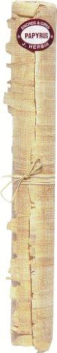 J.Herbin 91100T - Rollo de papiro con 2 curvas, aprox. Din A3