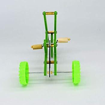 Mankoo Formation Perroquet vélo Jouet Mini vélo Accessoire de Jeu d'oiseau pour la Formation récréative des Oiseaux