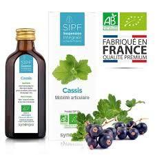 ❀ Französischer Bio-Johannisbeersaft ❀ Lösung zum Einnehmen von frischen Pflanzen – Gelenkpflege, Gelenkbeweglichkeit, Gelenkschmerzen – hergestellt in Frankreich, zertifiziert ✓ AB-zertifiziert