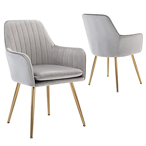 DMF Furniture Modern Velvet Accent Chair Set of 2 High Back Elegant Dinning Chairs with Arms in Living Guest Room (Grey)