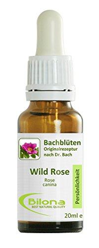 Joy Bachblüten, Essenz Nr. 37: Wild Rose; 20ml Stockbottle
