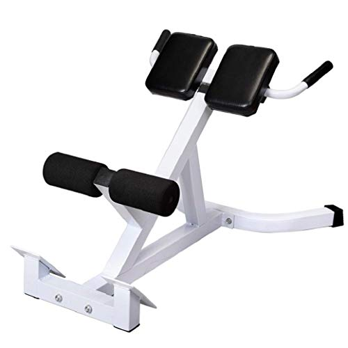 Adjustable Roman Chair Bench, Hyperextension Back Extension Machine, Ab Workout Exercise, with Push-up Bars, Home Gym Equipments for Women and Men