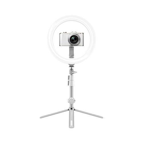 Kodak LED Ringlicht mit Stativ für Smartphones & kleine DSLR- und Actioncams (25cm Durchmesser; Verstellbare Helligkeit, Höhe und Farbbalance; 1800 Lumen; Fernauslöser & Tragetasche inklusive)
