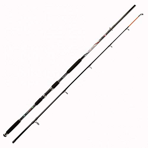 Lineaeffe Carbon Catfish 350 2.70 m up to 350 g Canne...