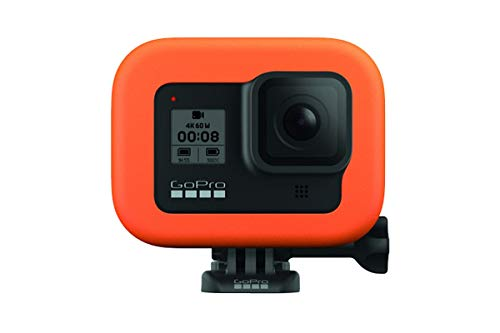 GoPro Bite Mount + Floaty for HERO8 Black (Official GoPro Accessory), ASLBM-002 & Amazon Basics GoPro Carrying Case - Small