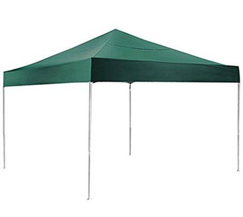Best pop up canopy: ShelterLogic Pro Series Canopy