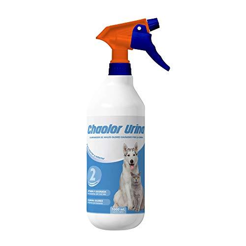 RC ocio Destructeur d'odeur Urine Chien-Chat/Desodorisant Urine Animaux Maison intérieur et extérieur/Nettoyant enzymatique/Neutraliseur d'odeur Urine/Odeur Urine Off Chien-Chat (5 litres) (1 litres)