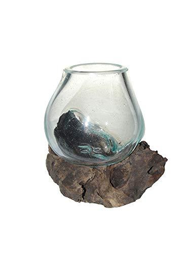 SAWA Ausdrucksvolle Deko-Vase Glasvase Blumenvase Mini H ca 12 cm auf Treibholz/Wurzelholz Vase mit Holz