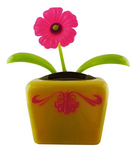 Outdoors By Design Eco-Friendly Solar Powered Dancing Flower Toy | Pink Gerber Daisy Solar Flower in Decorative Pot | Office Desk, Car Décor, and Daisy Sunflower in Colorful pots