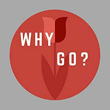 Why Go? Project