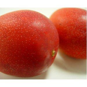 【お中元】宮崎県産 完熟マンゴー 大玉 (1個:350〜430g) 2個入り【のし付】