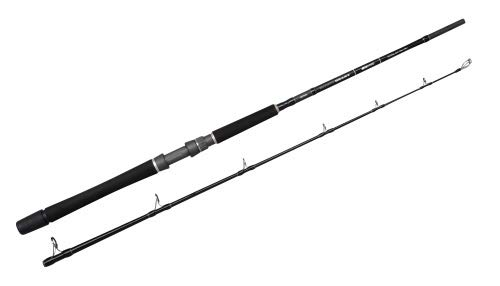 Spro Salty Beast Nord Natural Bait 1,90m WG 50lbs