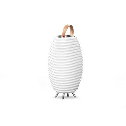 Synergy 35S – 3-in1 LED-Lampe Bluetooth-Lautsprecher & Weinkühler – LED-Licht, Musik-Streaming und Wein-, Champagner oder Bier kühlen
