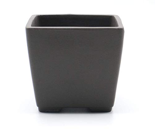 Seto Yaki Bonsai Tree Pot Ceramic Square Shaped (3.5', No-Glazed)