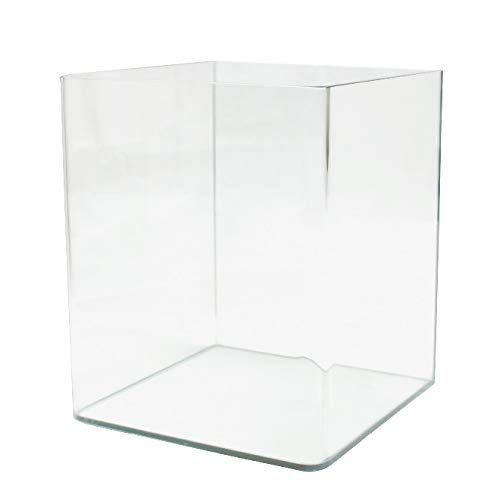 Amtra Nanotank 60 - Vasca in vetro per l'allestimento di acquari, 60 Litri, 38 x 38 x 43 cm