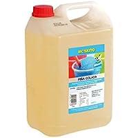Sirup Slush concentrado Slush Ice/Slush AZO FREI Eis Pina Colada sin alcohol 5 litros Ergibt 30 litros Slush