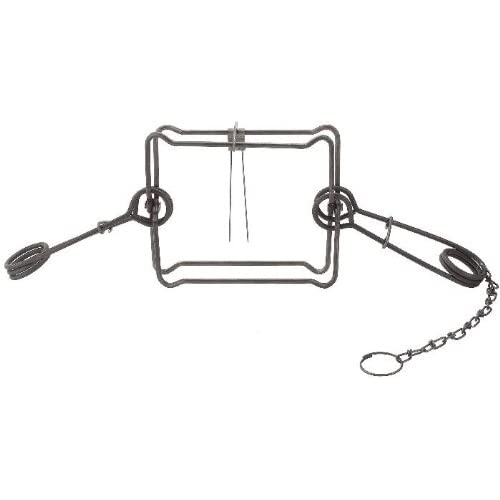2 Pack Duke 220 Double Spring Body Trap for Coon-Otter-Fisher-Ground Hog-Skunk