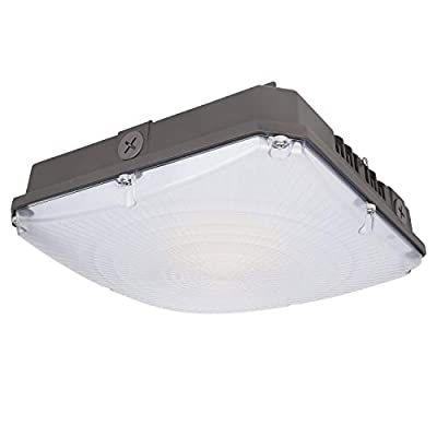 Hykolity 10x10 inch Dimmable LED Canopy Light 1 Pack