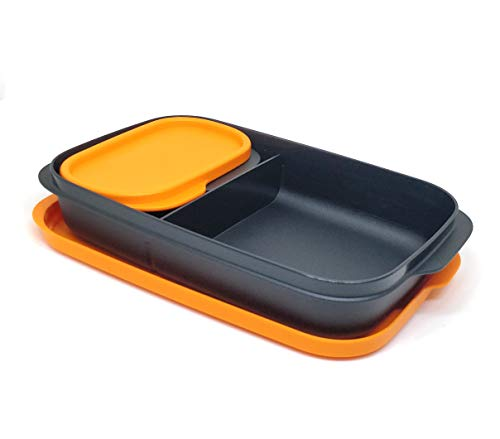 Tupperware Lion King My Lunch Box, Set of 1, Multicolor (Color May Vary)