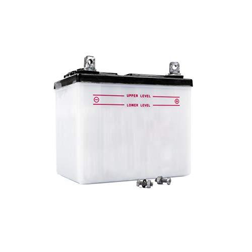 Jardiaffaires U1R9 - Batería para tractor cortacésped independiente (sin ácido)