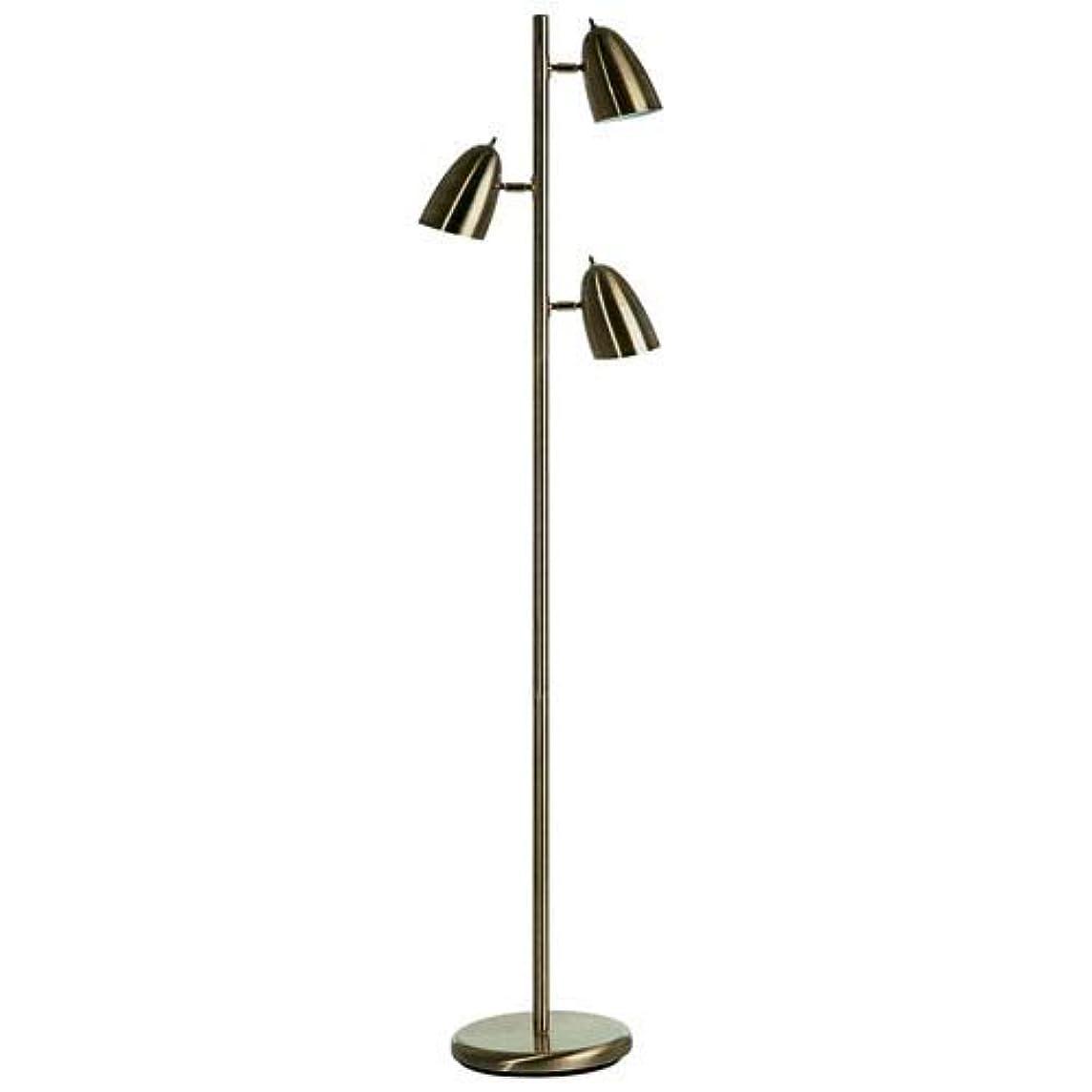 Dainolite Lighting DM330FAB Floor Lamp, 14
