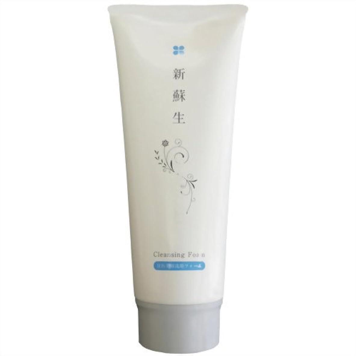 要件歌う貫通新蘇生 日医美容洗顔フォーム 120g