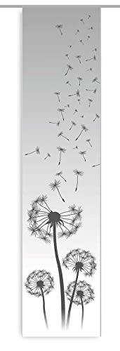 gardinen-for-life Flächenvorhang Dandelion Grey, Schiebevorhang mit Tollem Druck-Motiv, Gr.60x260 cm Frühlingsvorhang, Pusteblume