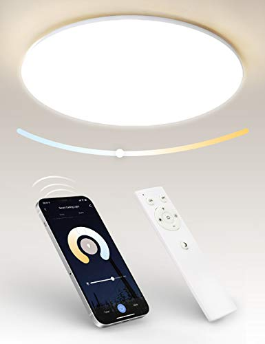 Plafoniera LED Soffitto 24W, Tasmor Smart WiFi Lampada da Soffitto LED 2700-6500K, Dimmerabile e Telecomando IR, Compatibile con Alexa e Google Home, Ø40cm IP54 2400LM per Camera da Letto Cucina Bagno
