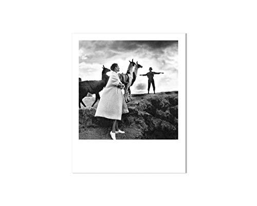 Cartolina Polaroid: Donna, Gentelmen e Lama, Sogni, Storie, Memorie, Fatto a mano, Fotografia Vintage - Galeria LueLue