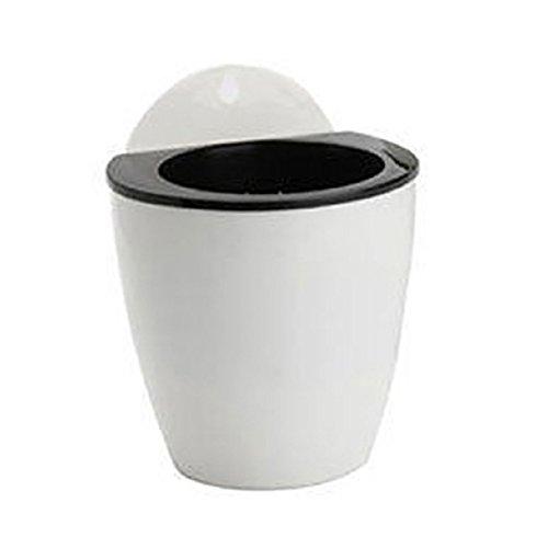 Kalaokei Pot de fleurs créatif à suspendre au mur - Absorbe automatiquement l'eau - Décoration d'intérieur - Blanc + noir - S