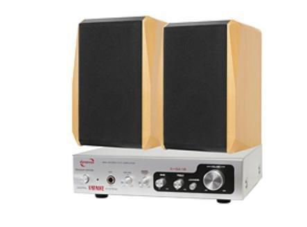 Dynavox - Amplificatore Dream Sound Set II (da 150 Watt), con altoparlanti, colore: Argento/Faggio