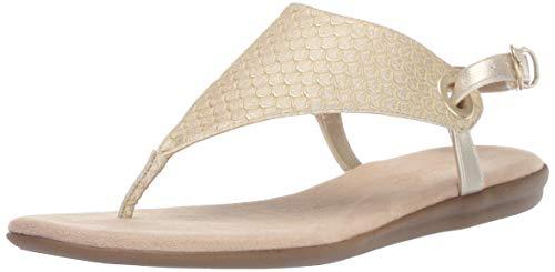 Aerosoles Women's Conchlusion Gladiator Sandal