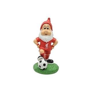 Team Mini Gnome Liverpool