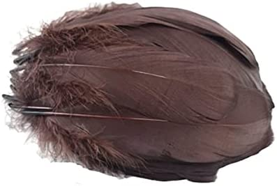 DinoSwap Natural Dark Brown Goose for Crafts Jewelry Ma Feathers SALENEW very Limited time cheap sale popular