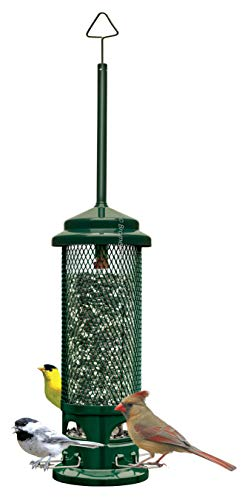 Squirrel Buster Legacy Squirrelproof Bird Feeder w/4 Metal Perches 26pound Seed Capacity