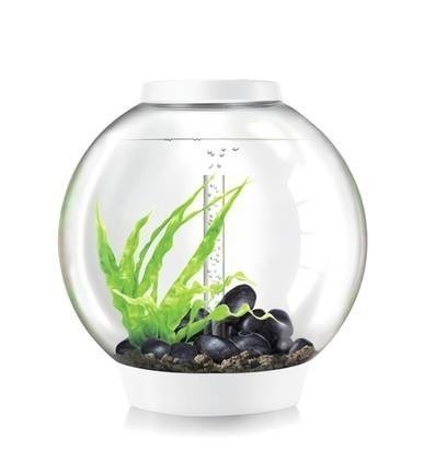 biOrb Classic 60 Aquarium with LED - 16 Gallon, White