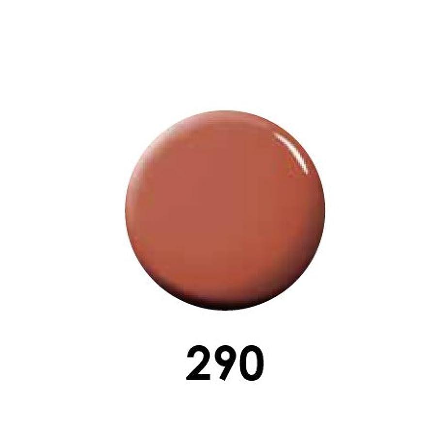 磁石列挙する化学薬品Putiel プティール カラージェル 290 レッドソイル 2g (MARIEプロデュース)