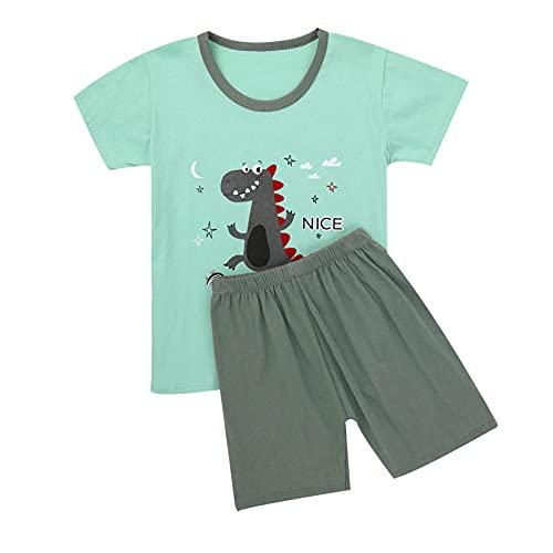 Alvivi Baby Jungen Mädchen Kleidung Set Cartoon Tier Druck Kurzarm T-Shirt Tops mit Shorts Kurze Hosen Sommer Set Jogginganzug Grau Dinosaurier 86-92