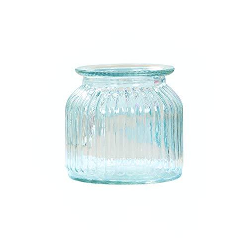Skyeye Moderne col Large Vase en Verre Rayures Verticales Jacinthe d'Vase en Verre hydroponique Vase pour Home Garden Décoration Bleu 10.8 cm*11 cm